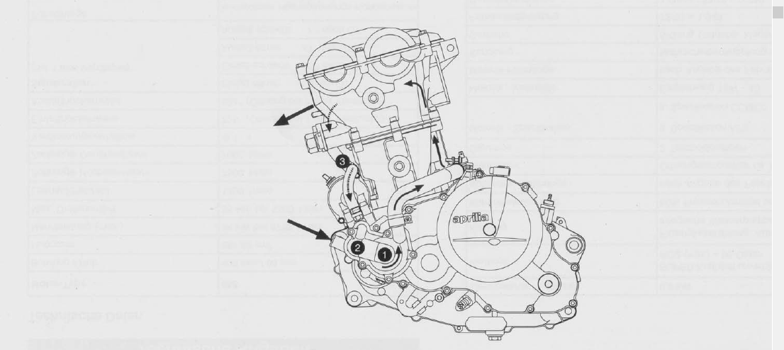 Service Manual Engine Rotax 655 Aprilia Pegaso 650 1995